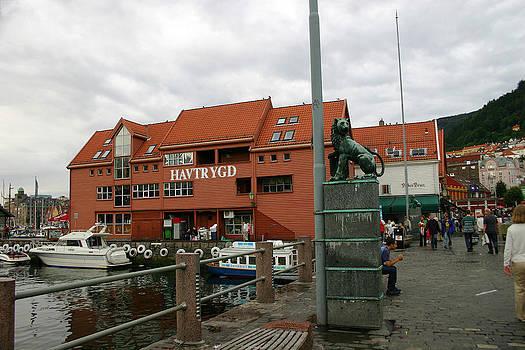 Nina Fosdick - Lion of Bergen