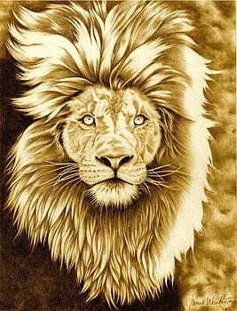 Lion Pride by Jamie Warkentin