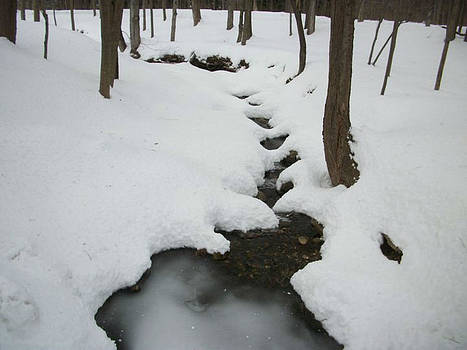 Liquid Path by Strong Heart