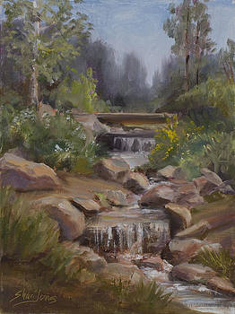 Little Creek by Shari Jones