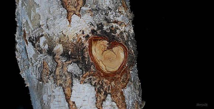 Little heart by Marija Djedovic