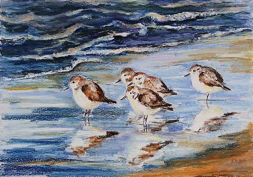 Little Stints by Barbara Pommerenke