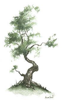 Little Zen Tree 626 by Sean Seal