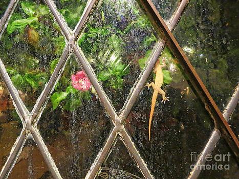 Lizard with Flower by Nora Martinez