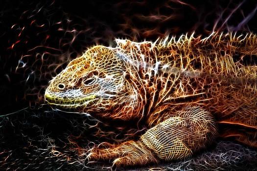 Lizart by Ratan Sonal