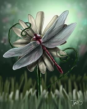 LL's Dragonfly by Joseph  Davis