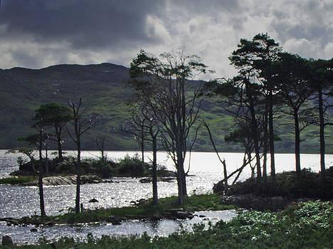 Loch Assynt by Steve Watson