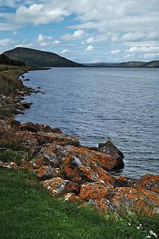 Loch Fleet by Steve Watson