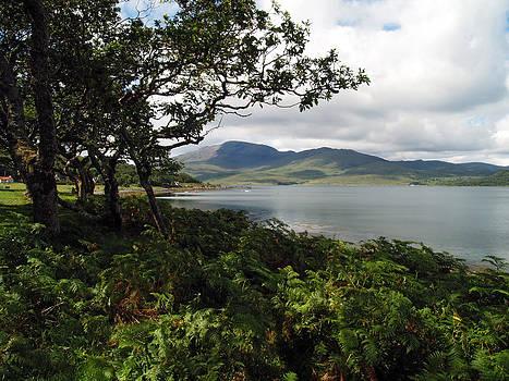 Loch Spelve and Croggan 2 by Steve Watson