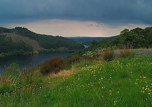 Loch Trool by Steve Watson