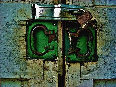Locked in by Steve Skinner