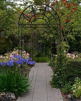 Locks Garden by Ami Tirana