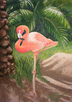 Lone Flamingo by Diane Ferguson