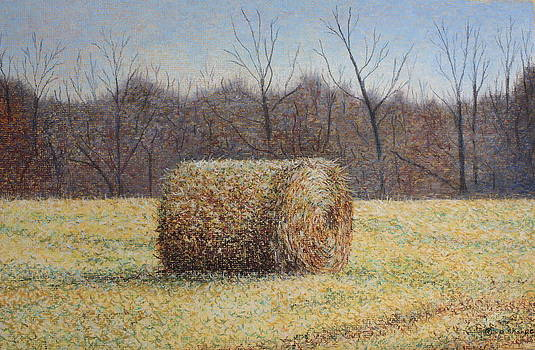Lone Haybale by Patsy Sharpe