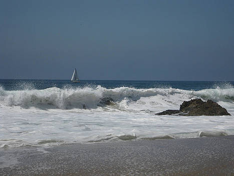 Lone Sail on the Sea by Diana Poe