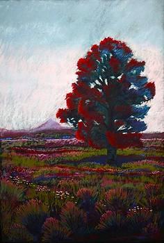 Lone Tree by Drusilla Montemayor