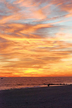 Long Beach Sunset by David Clark