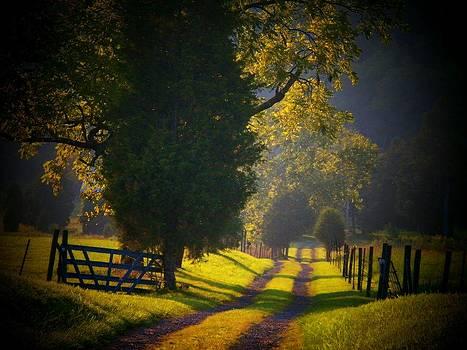 Long Lane by Joyce Kimble Smith