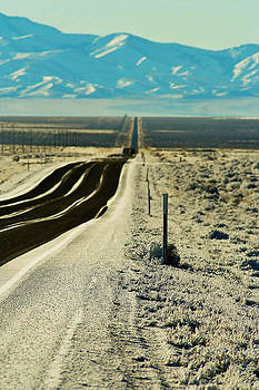 Long Nevada Road by William Kelvie