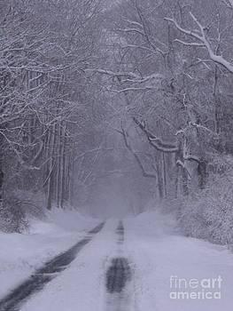 Long Road Home by Schnina Walker