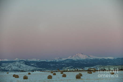 Longs Peak and Big Round Bales by A Stamp