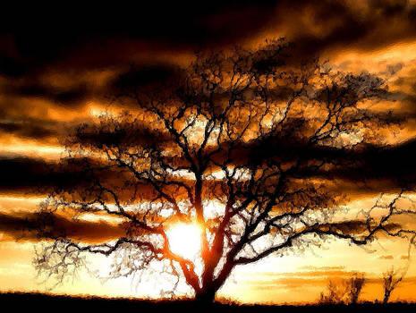 Karen Scovill - Lonley Tree