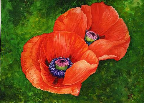 Look at the Poppies by Carrie Auwaerter
