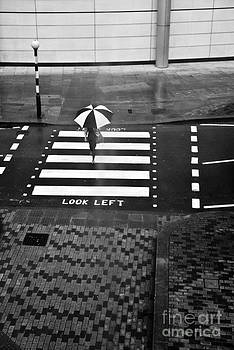 Look Left by Linda Wisdom