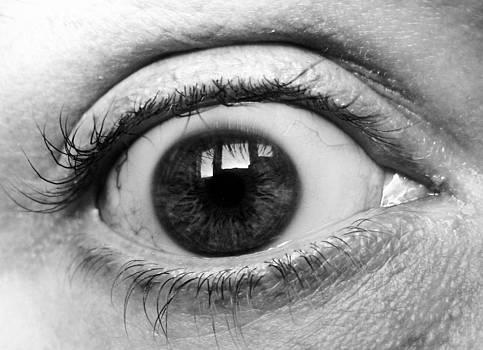 Looking Glass by Richard Lloyd