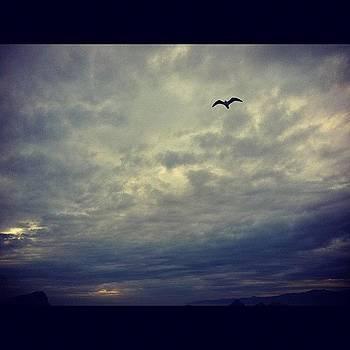 #losangeles #la #venicebeach #sky by Irina Liakh