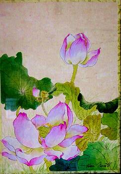 Lotus Flower by Hsiu  Norcott