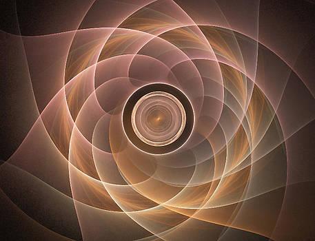 Lotus by Jennifer Gelinas