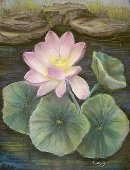 Lotus by Katalin Luczay