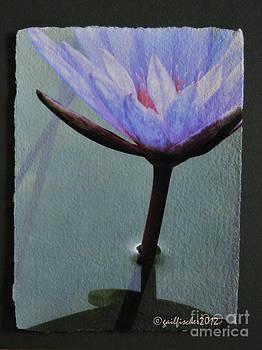 Lotus1 by Gail Fischer