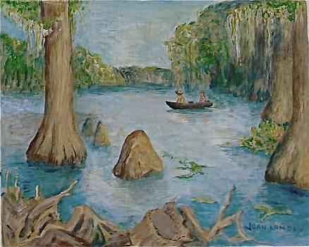 Louisiana Bayou by Joan Landry
