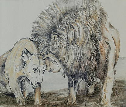 Love on the Plains by Teresa Smith