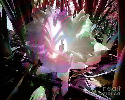 Lovely Blossom by Ruth Kongaika