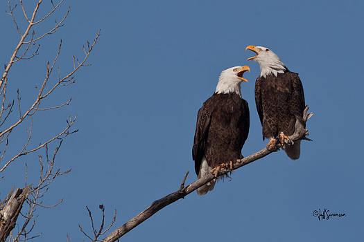 Lovers Quarrel by Jeff Swanson