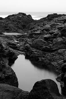 Margaret Pitcher - Low Tide