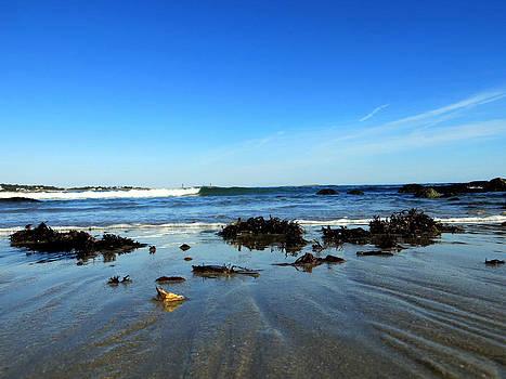 Low Tide on Long Beach by Pamela Turner