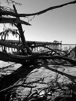 Shawna Gibson - Low tide