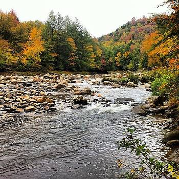 Loyalsock Creek Sullivan County PA by Dave M