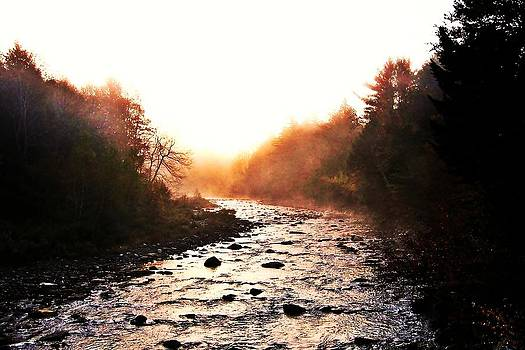 Loyalsock Creek Sunrise by Jim Goldseth