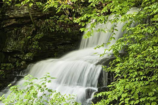 Loyalsock Waterfall by Frank Morales Jr