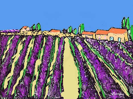 Luberon Lavender Field by Morrighan Wainwright