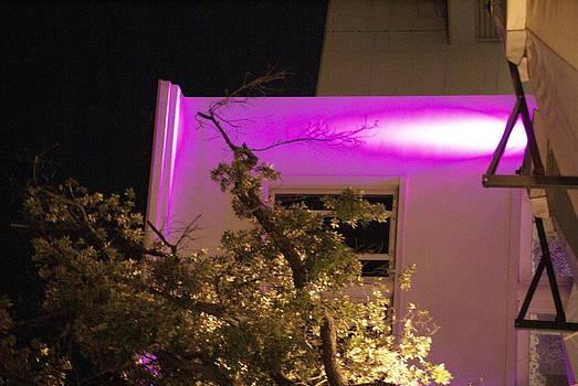 Luce di notte by Niki Mastromonaco