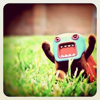 Lucha Domo Revisited [nikon D300 + by S Michelle Reese