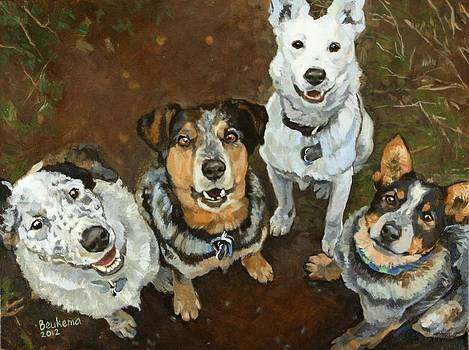 Lunacy of Cattledogs by Debbie Beukema