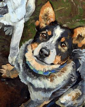 Lunacy of Cattledogs Iris by Debbie Beukema