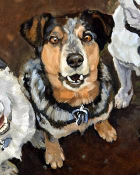 Lunacy of Cattledogs Luka by Debbie Beukema
